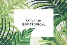 Trends | New Tropical