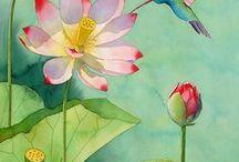 Flowers & Plants - Flores y plantas