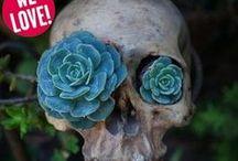 Autumn - Skulls / by Shannon McGuire Houck