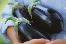 Vegetable Gardening / by Paula Coley