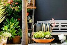 inspiration  |  courtyard / creating a special space in a courtyard
