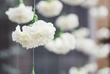 First Communion / by Brandi Leathers