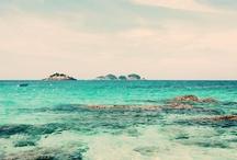 Beach, surf, perfect lives...