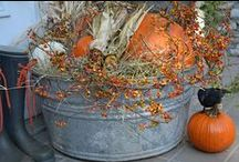 Fall, Halloween and Thanksgiving / by Joyce Thomas