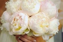 Wedding Planner: The Bouquet  / by Defne Erginler
