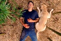 LOST / Lost - My favorite TV show of all time!