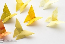 origami / by Pam Johnston