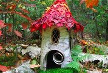 Fairy Garden / Mini this's and that's for our resident garden fairies <3 / by Sow & Dipity