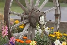 Country Garden / Wagon wheels, cowboy boots... / by Sow & Dipity