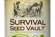 Sowing the seeds / Seed starting and how to get growing / by Sow & Dipity