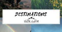 Wild Life Destinations