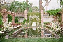 wedding ideas / by Allison Schwartz