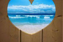 beach / by jayne evangelista