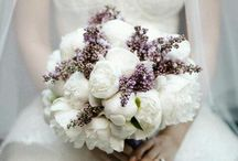 {Weddings} / by Melissa Freeman