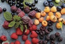 My Fruit Garden