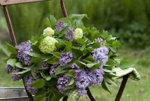 Gardens, Flowers, Outdoor Spaces / beautiful flowers, outdoor spaces, patios, gardens