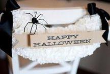 Fall & Halloween / Crafts & diy decor / by Amanda Cifra