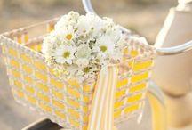 Daisies my favorite! / by Nina Goode