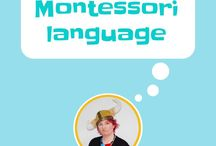 Montessori Language / Montessori language materials: the moveable alphabet, sandpaper letters, salt tray, sand tray, miniature phonics, phonics, metal insets, how to hold a pencil
