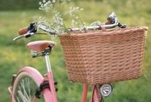 Bikes / by Sweet Serenity