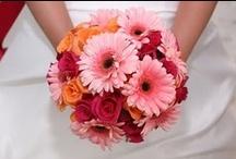WEDDING - Ideas for Rachel's Awesome Wedding!!!