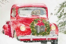 Thanksgiving/Christmas / by Steph Christensen