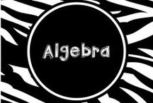 Wild About Algebra / Ideas for teaching algebra concepts including order of operations and coordinate graphing.