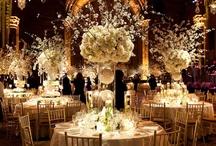 Wedding Ideas / Centerpieces, decorations, aisle ideas, floral bouquets, misc. / by Beverly Newton