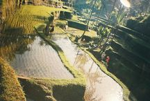 Bali / Been there, done that.... Amazing!
