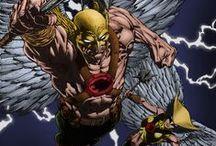 Hawkman & Hawkgirl / DC Comics