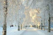 Wintery/festive