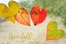 Fall - My Favorite Time of Year! / by Deborah Lancellotti