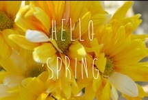 Spring! / by Deborah Lancellotti