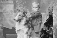 to say nothing of the DOG / Some favorite images of dogs and their people and some, just dogs. Most images are sourced from the University of Virginia Library digital repository and are housed in the Albert and Shirley Small Special Collections Library, University of Virginia. You may request high quality images for reproduction from UVa Library's Digital Curation Services at http://tracksys.lib.virginia.edu