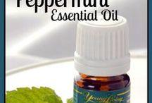Essential Oils / by Jennifer Miller