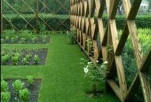 Gardening Structures