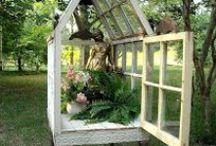 Outdoors/Gardens / Any great outdoors tips, decor, diy, beauty.