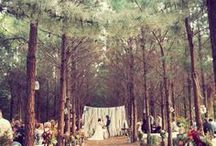 Woods Party / Inspiration for a party or wedding in the woods