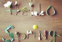 Spring Party / SPRING HAS SPRUNG