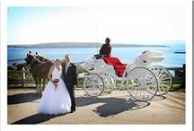 Northern Michigan Wedding Venues / Glorious wedding venues in Northern Michigan. Wedding venues in Traverse City, Mackinac Island, Cheboygan, Petoskey, Charlevoix, Marquette, Sault St. Marine, St. Ignace, Alpena & Harbor Springs.
