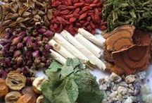 Healing Herbs, Plants & Spice