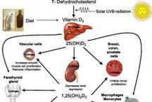 Vitamin D Receptor (VDR)