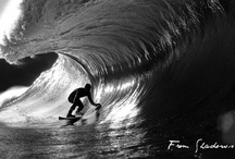 Great Images / by Chris Panaia