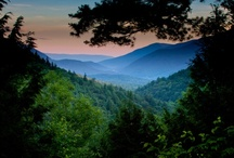 My Appalachian Mountains / by Mary McSpadden