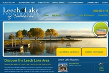 Chamber of Commerce Web Design / Website Design by Faster Solutions Inc. Duluth MN | Brainerd MN fastersolutions.com