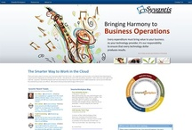 Professional Service Web Design / Website Design by Faster Solutions Inc. Duluth MN | Brainerd MN fastersolutions.com