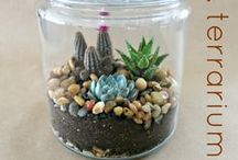 DIYs & Helpful Tips / DIY projects and helpful household tips! / by Victoria Dahl