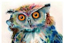 owls / by Christi Barker