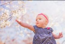 Cherry Blossom Family Photos