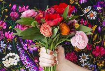Flower Power / Flowers / by Celia Scanlon